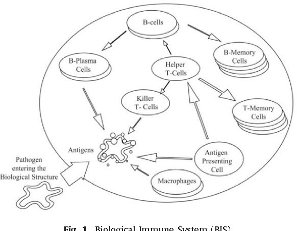 Figure 1 From A Biological Immune System Bis Inspired Mobile Agent