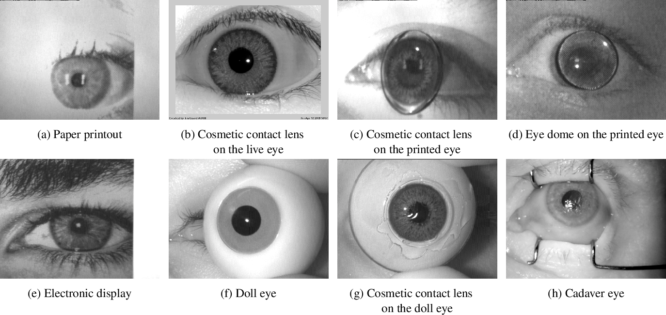 Figure 2 for Iris Liveness Detection Competition (LivDet-Iris) -- The 2020 Edition