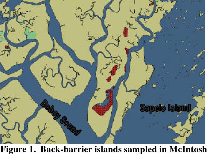 Map Of Georgia Barrier Islands.A Vegetative Survey Of Back Barrier Islands Near Sapelo Island