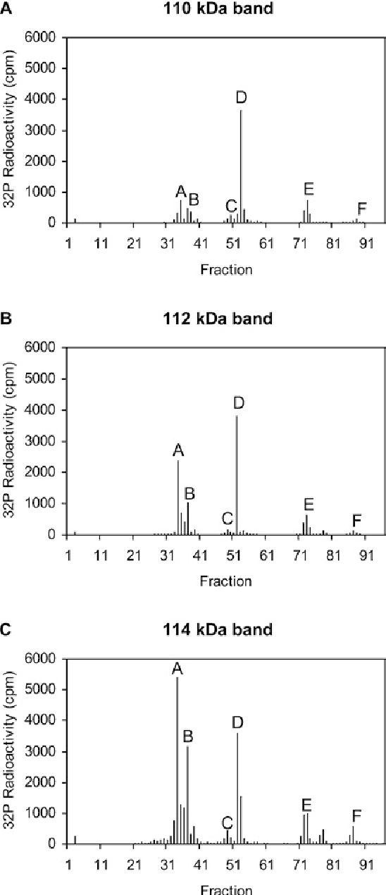 Figure 3 from phosphorylation of androgen receptor isoforms figure 3 ccuart Images