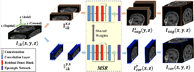 Figure 3 for Deep Slice Interpolation via Marginal Super-Resolution, Fusion and Refinement