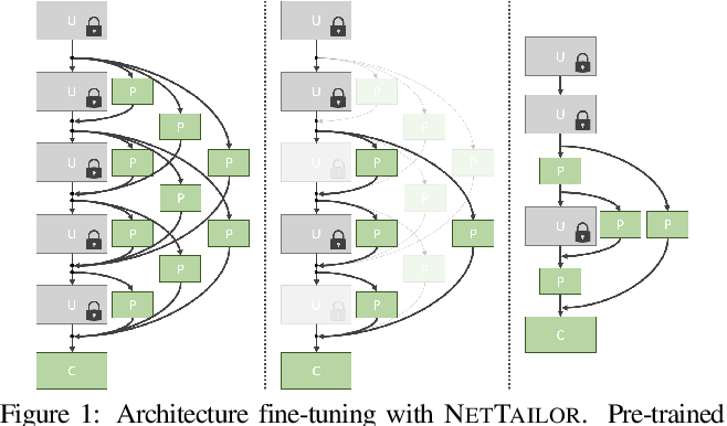 Figure 1 for NetTailor: Tuning the Architecture, Not Just the Weights