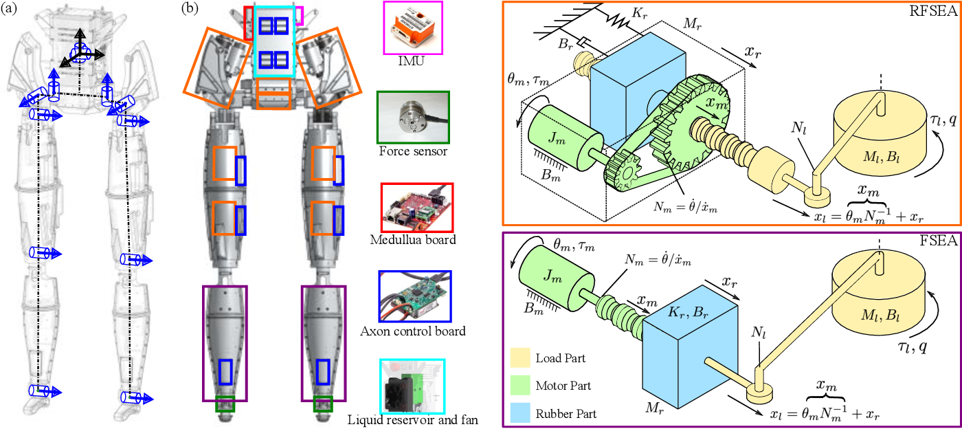 Figure 3 for Control of A High Performance Bipedal Robot using Viscoelastic Liquid Cooled Actuators