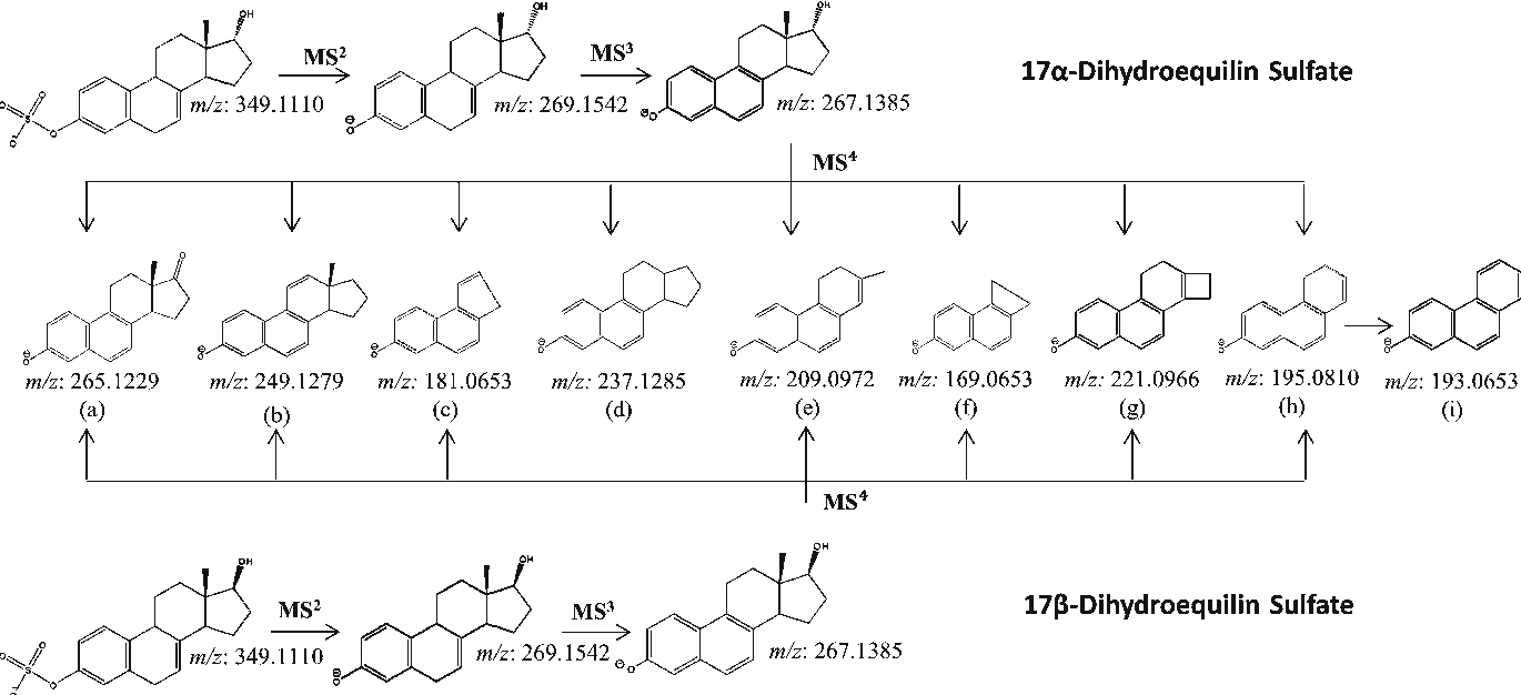 Figure 4. Proposed fragmentation pathways of 17α-dihydroequilin sulfate and 17β-dihydroequilin sulfate