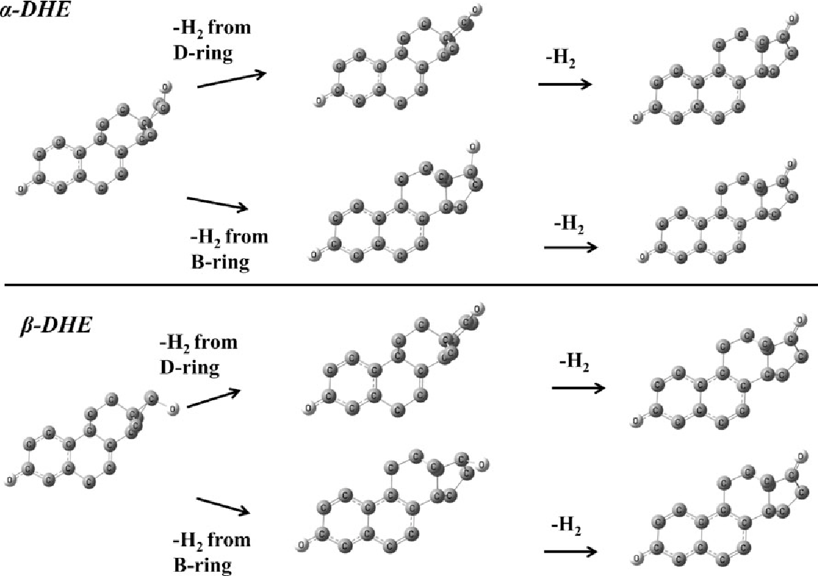 Figure 5. Simulation of possible fragmentation pathways of ADHE and BDHE. Structures optimized in their lowest energy conformation using DFT/B3LYP and 6-31G basis set. The hydrogens were removed so the C- and D-rings could be seenmore clearly