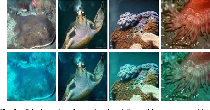 Figure 2 for Enhancing Underwater Imagery using Generative Adversarial Networks