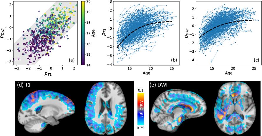 Figure 4 for Longitudinal Correlation Analysis for Decoding Multi-Modal Brain Development