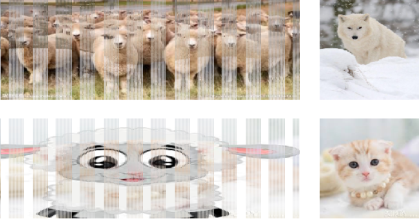 Figure 1 for Wolf in Sheep's Clothing - The Downscaling Attack Against Deep Learning Applications