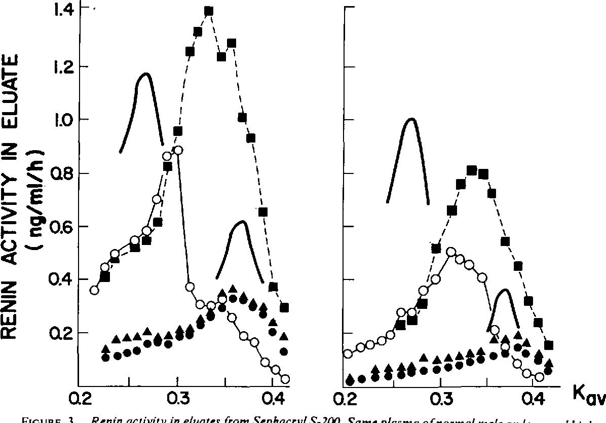 Figure 3 From Inactive Renin Of High Molecular Weight Big Renin In