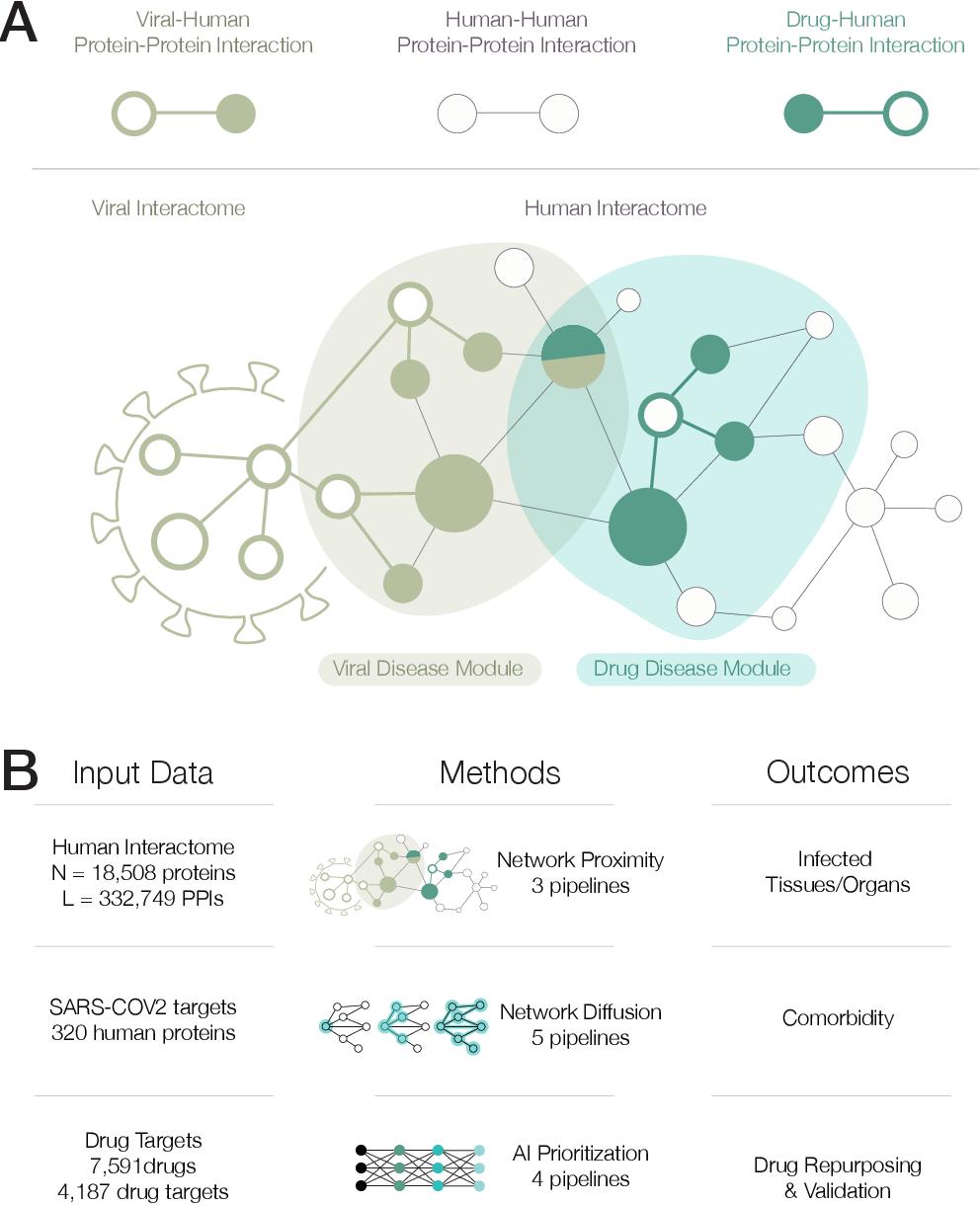 Figure 1 for Network Medicine Framework for Identifying Drug Repurposing Opportunities for COVID-19