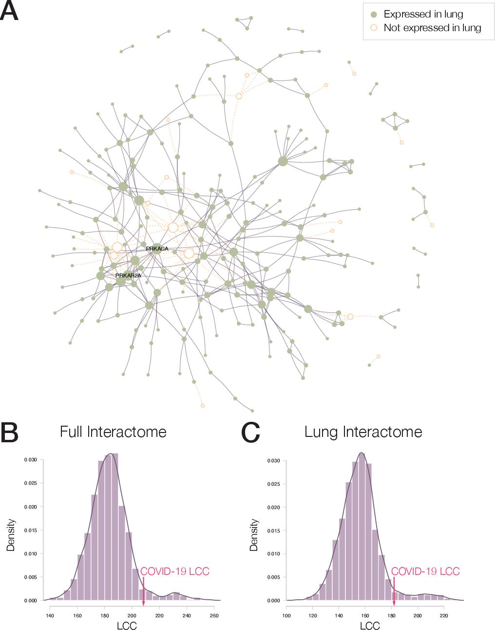 Figure 3 for Network Medicine Framework for Identifying Drug Repurposing Opportunities for COVID-19