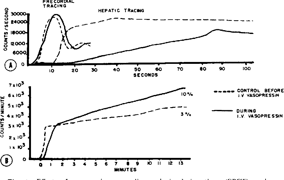Effects Of Pituitrin And Vasopressin On Hepatic Circulation
