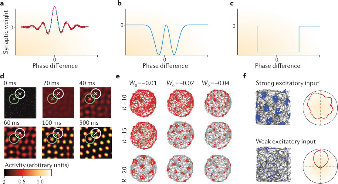 Figure 2 from Grid cells and cortical representation - Semantic Scholar