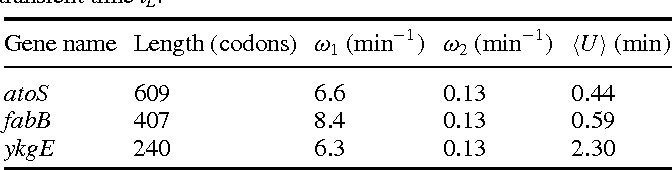 Table 1. Fitting parameters for the three mRNA species shown in figure 3. The rates ω1 and ω2 enter the age-dependent degradation rate defined in equation (5). The length of the mRNA determines the transient time tL.