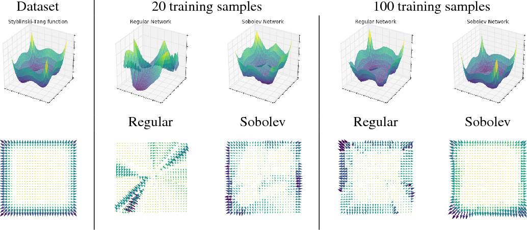 Figure 4 for Sobolev Training for Neural Networks