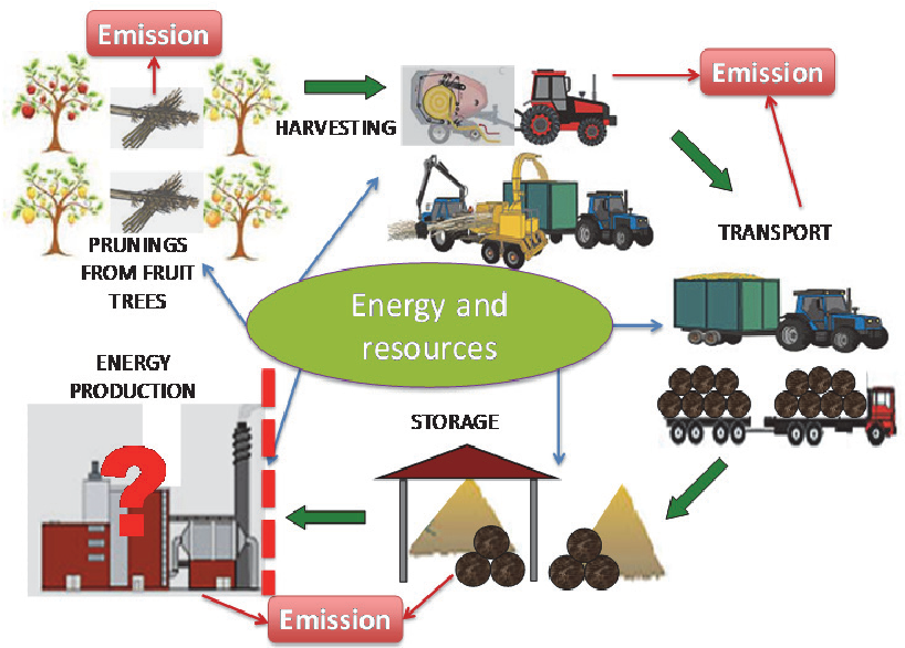 Determination of the environmental impact of a new biomass logistics