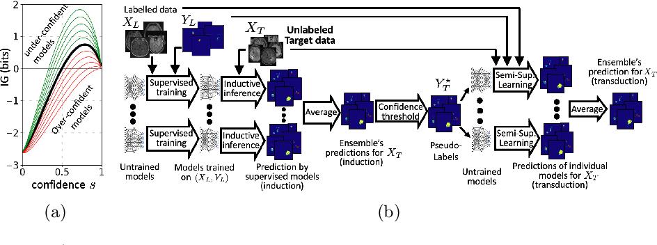 Figure 1 for Transductive image segmentation: Self-training and effect of uncertainty estimation