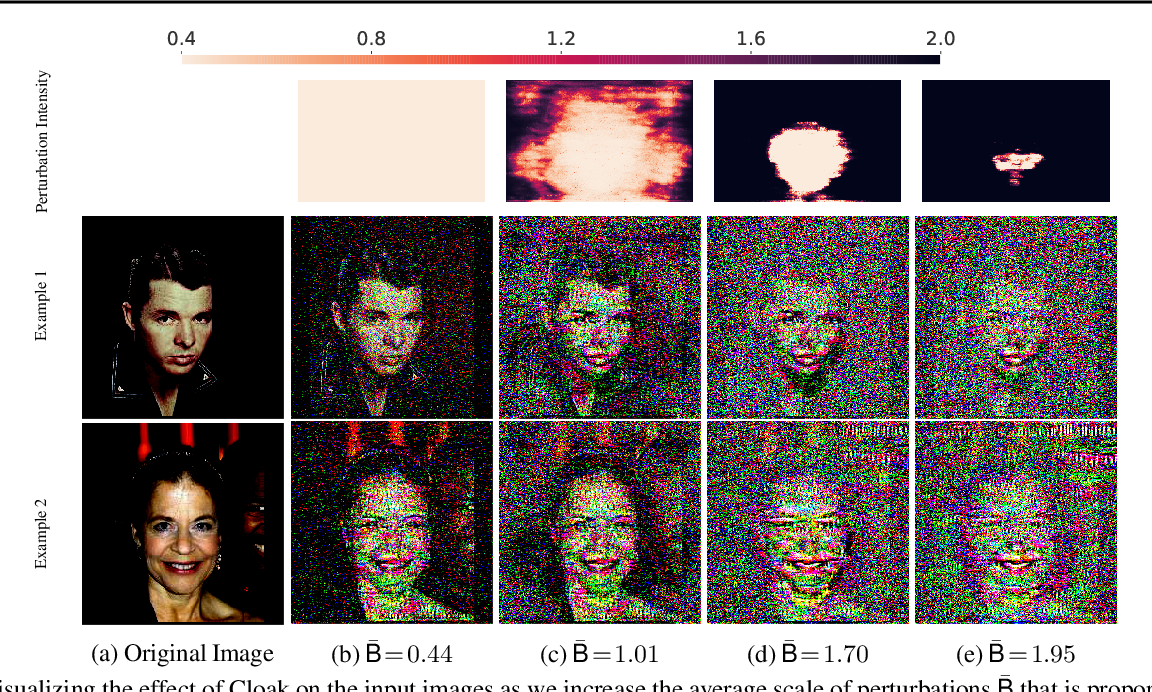 Figure 1 for A Principled Approach to Learning Stochastic Representations for Privacy in Deep Neural Inference