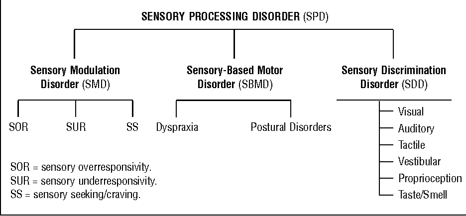 research sensory integration paper The effects and benefits of sensory integration therapy on a student with autism by sara h gardner  a research paper submitted in partial fulfillment of the.