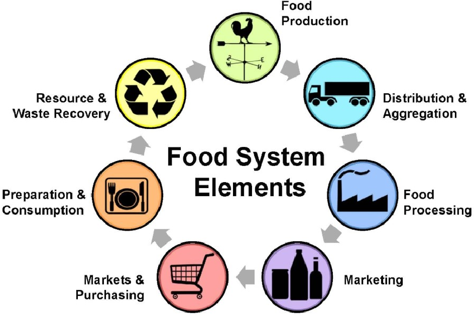 Figure 1 for Biometric Blockchain: A Better Solution for the Security and Trust of Food Logistics
