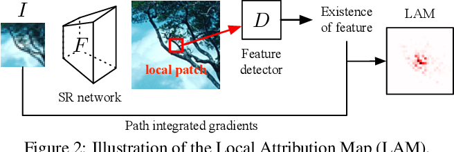 Figure 3 for Interpreting Super-Resolution Networks with Local Attribution Maps