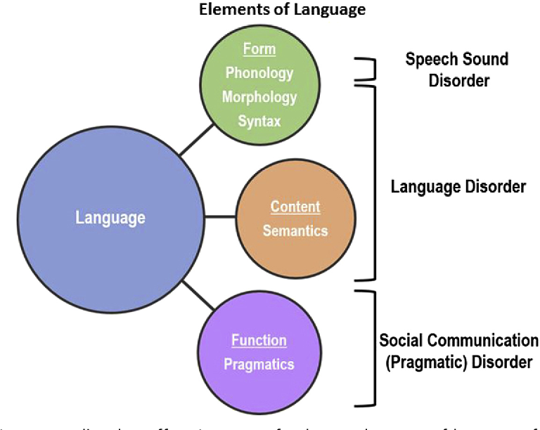 Definitions of Communication Disorders and Variations