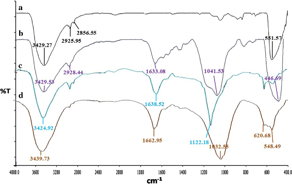 Fig. 2 FTIR overlay spectra of a pristine ZnO, b ZnO-PEI, c lipase, and d ZnO-PEI-SAA