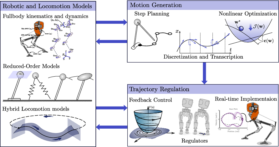 Figure 1 for Dynamic Walking: Toward Agile and Efficient Bipedal Robots