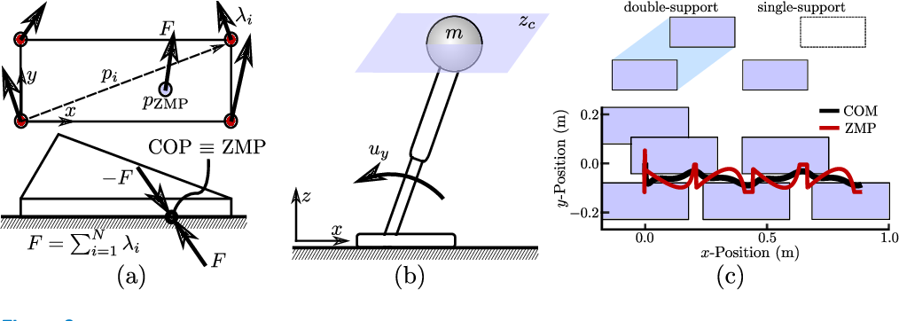 Figure 3 for Dynamic Walking: Toward Agile and Efficient Bipedal Robots