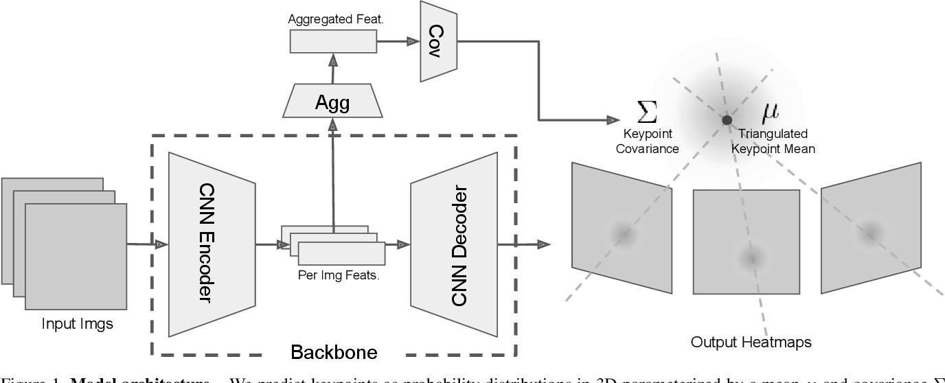 Figure 1 for Human 3D keypoints via spatial uncertainty modeling