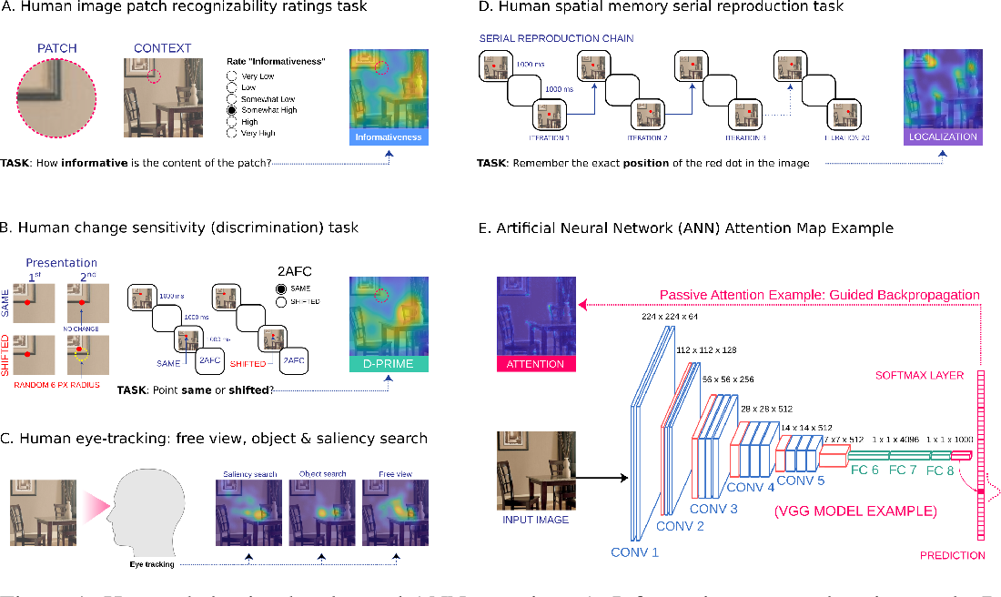 Figure 1 for Passive attention in artificial neural networks predicts human visual selectivity