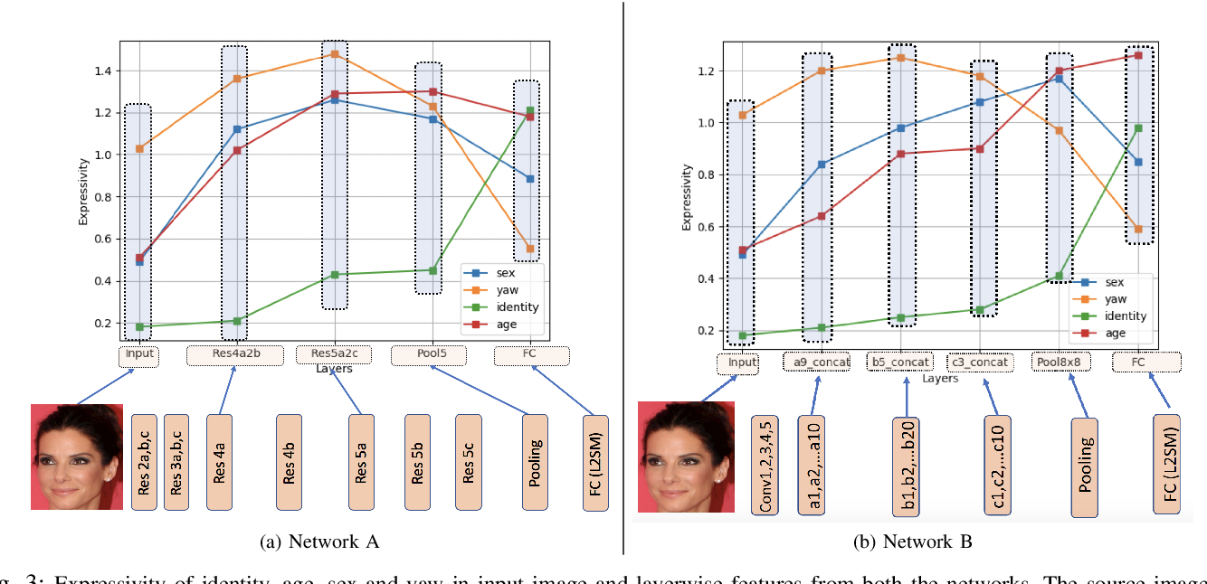 Figure 3 for How are attributes expressed in face DCNNs?