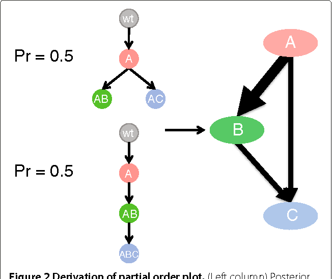 Figure 3 for Inferring clonal evolution of tumors from single nucleotide somatic mutations