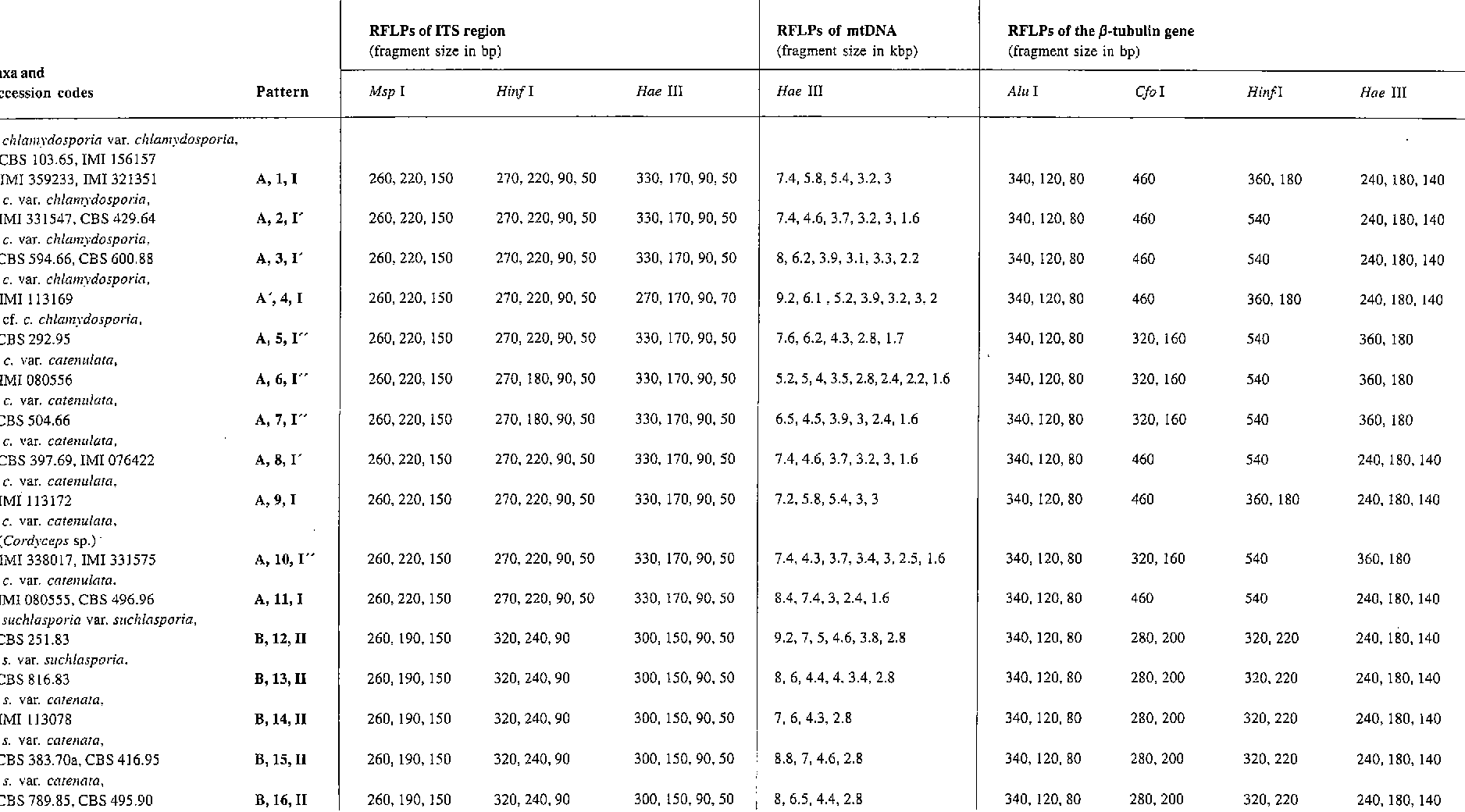 Table I from A revision of Verticillium section Prostrata  V  The