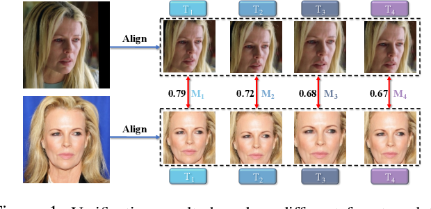 Figure 1 for Searching for Alignment in Face Recognition