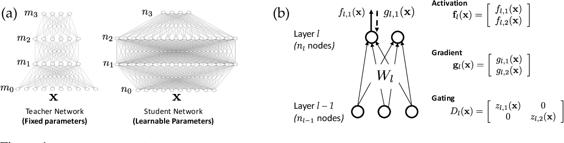 Figure 1 for Student Specialization in Deep ReLU Networks With Finite Width and Input Dimension