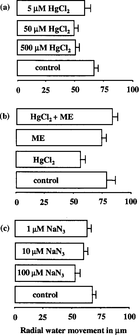 Figure 2. (a) Effects of the aquaporin inhibitor mercuric chloride (HgCl2) at concentrations of 5 mM, 50 mM and 500 mM HgCl2 on the mean lateral water movement. (b) Effect of 10 mM ME and of a 10-min preexposure of the tissue to ME following combined 50 mM HgCl2 and 10 mM ME treatment. The effect of 10-min NaN3 treatment at concentrations of 1 mM, 10 mM and 100 mM is presented in (c).