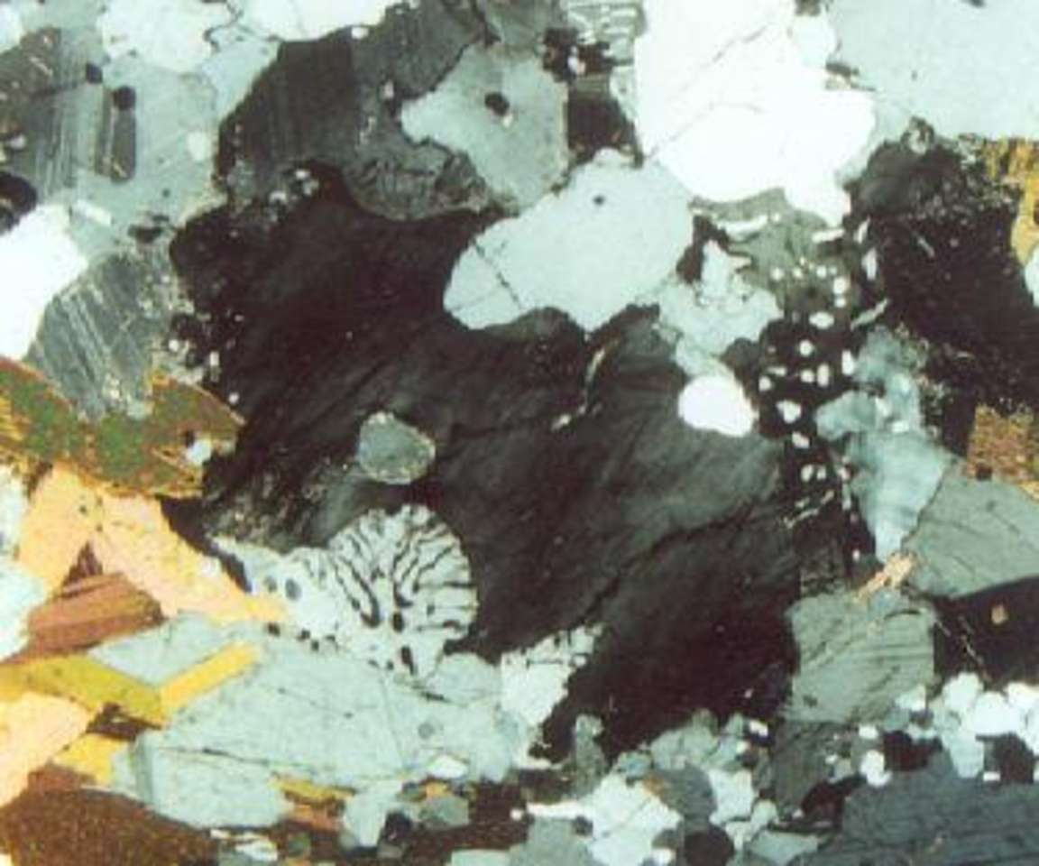 Fig. 3. Interstitial microcline (black; center), surrounded by albite-twinned plagioclase (gray, white), biotite (brown), and myrmekite with tiny quartz vermicules (white, black). Larger quartz (white, gray).