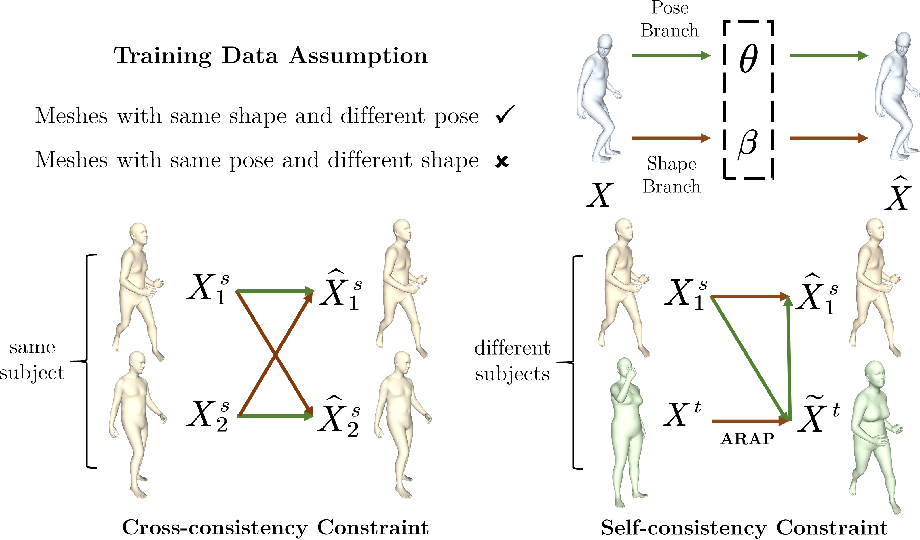 Figure 2 for Unsupervised Shape and Pose Disentanglement for 3D Meshes
