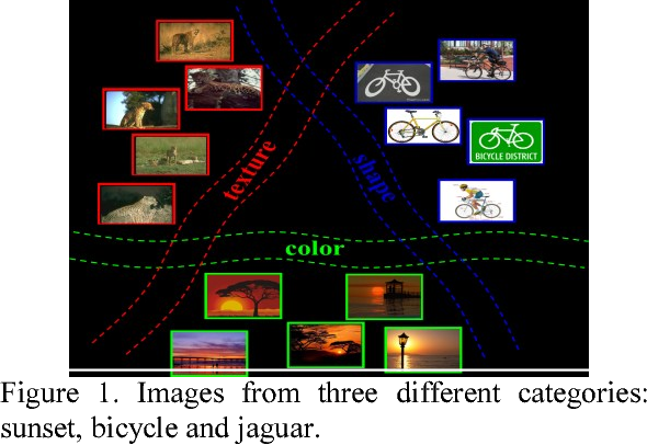 Figure 1. Images from three different categories: sunset, bicycle and jaguar.