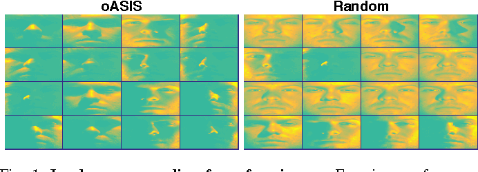 Figure 1 for Self-Expressive Decompositions for Matrix Approximation and Clustering