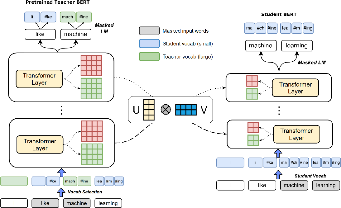 Figure 1 for Extreme Language Model Compression with Optimal Subwords and Shared Projections