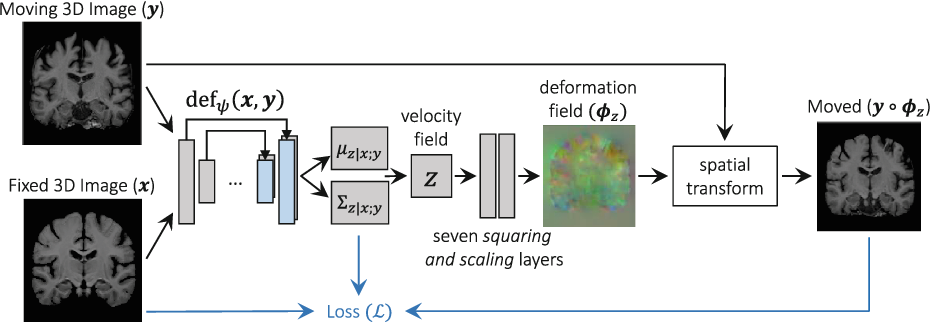 Figure 1 for Unsupervised Learning for Fast Probabilistic Diffeomorphic Registration
