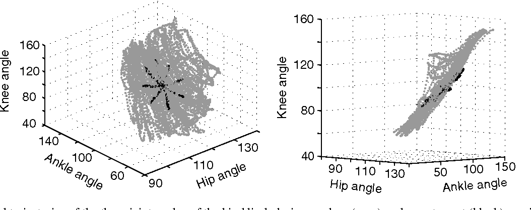 State space decoding of primary afferent neuron firing rates figure 2 ccuart Images