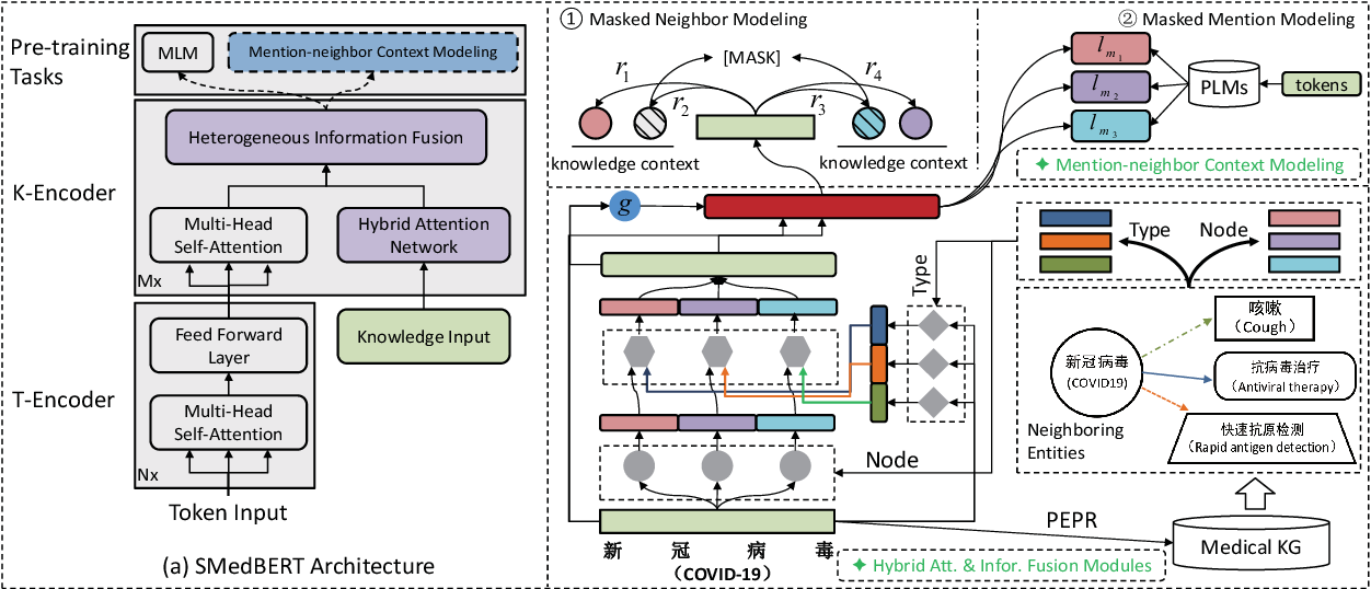 Figure 3 for SMedBERT: A Knowledge-Enhanced Pre-trained Language Model with Structured Semantics for Medical Text Mining