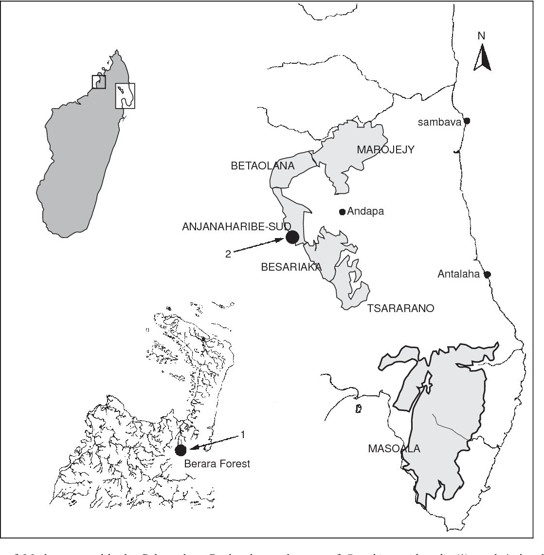 figure 1 from natural history and larval morphology of boophis Madagascar Geography map of madagascar with the sahamalaza peninsula study area of boophis