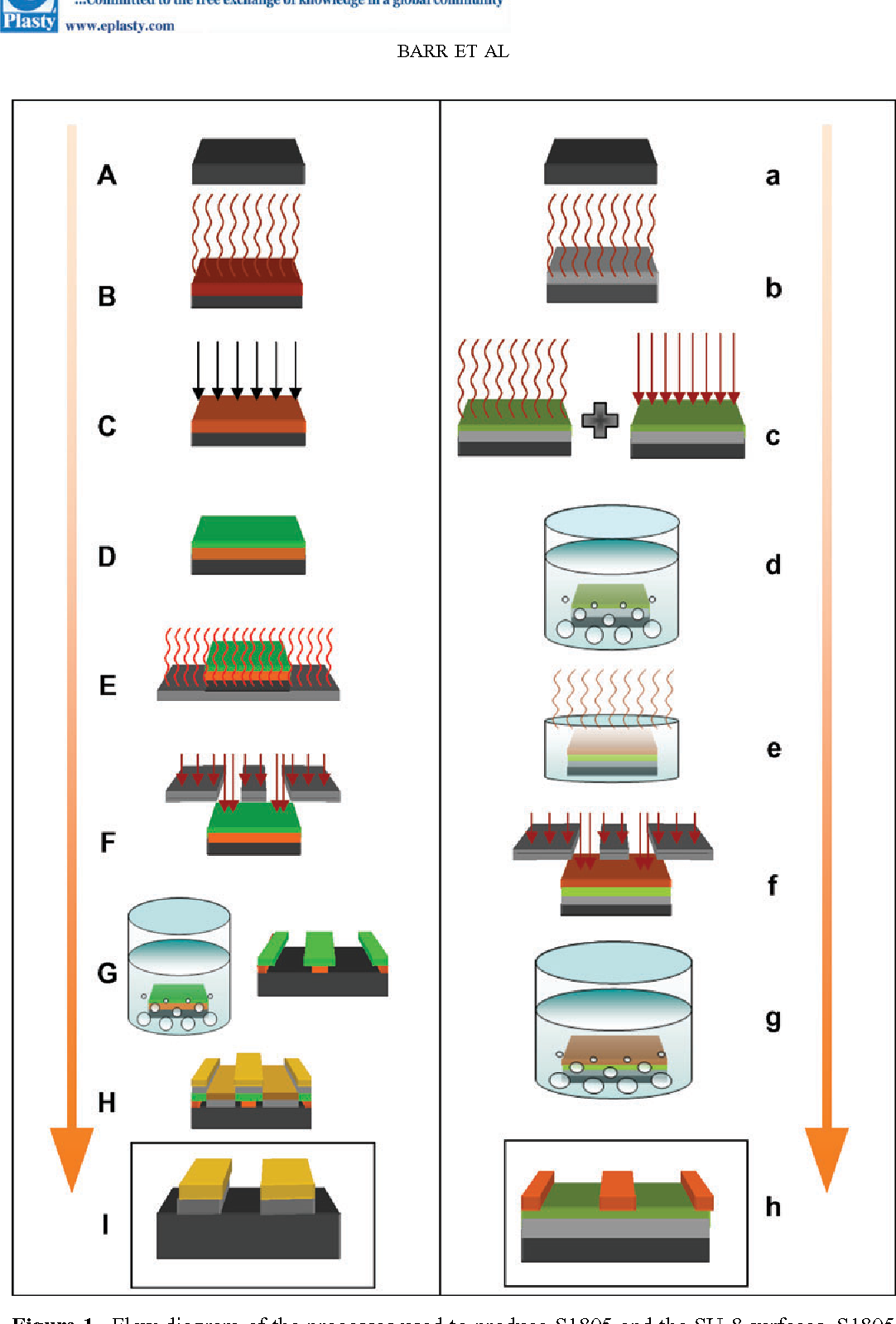 Figure 13 from Patterning of Novel Breast Implant Surfaces by