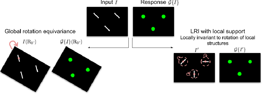 Figure 1 for Local Rotation Invariance in 3D CNNs