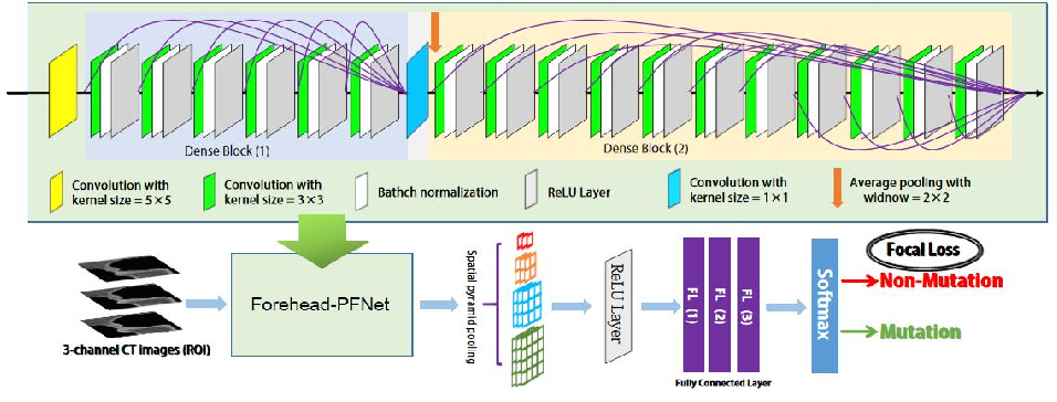 Figure 3 for Pyramid Focusing Network for mutation prediction and classification in CT images