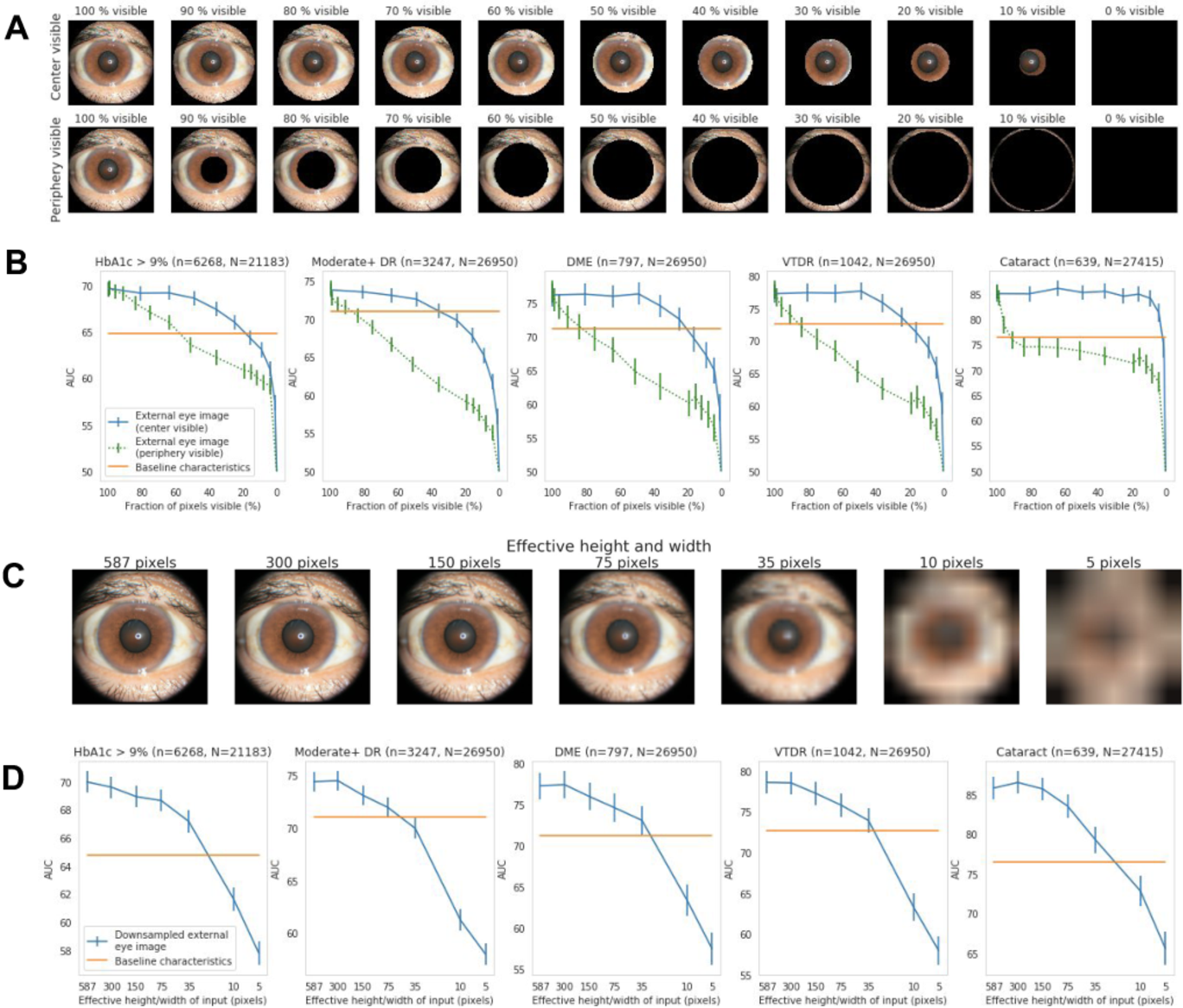Figure 4 for Detecting hidden signs of diabetes in external eye photographs